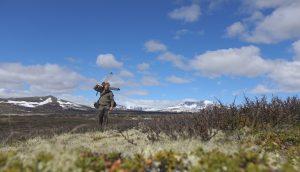 Tierfilmer und Naturfilmer Jens Klingebiel im Dovrefjell (Norwegen) wildlife cameraman