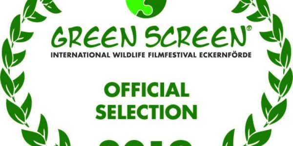 Greenscreen Filmfestival 2019, Das Vermächtnis, Official Selection